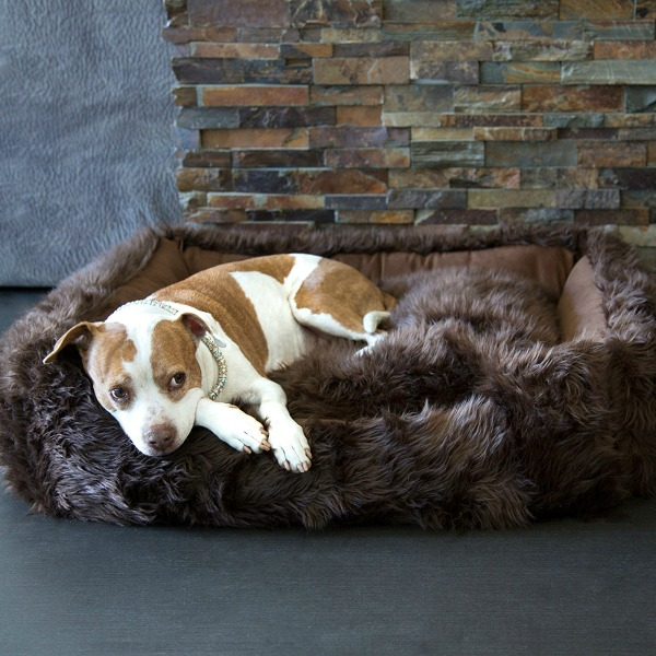 Shag Pet Lounger