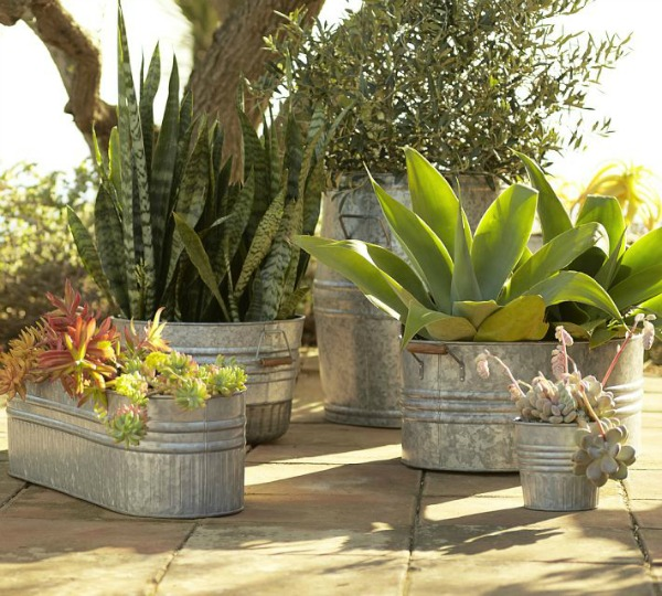 Galvanized Metal Tubs Buckets Pails As Planters Driven By Decor