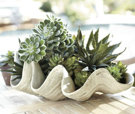 Decorative Giant Clam Shell from Ballard Designs