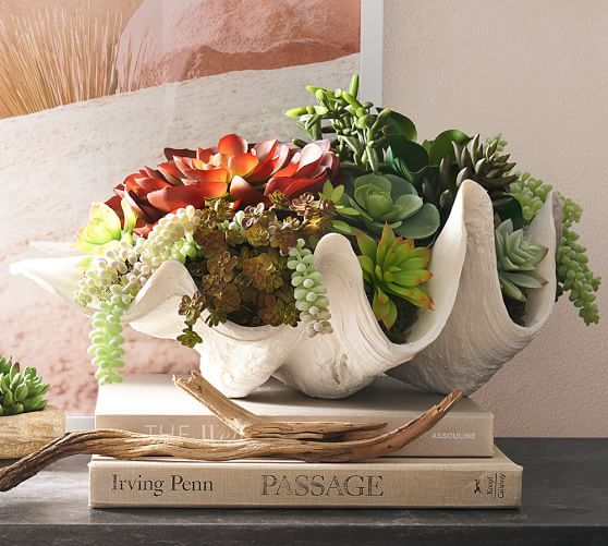 Loving the faux clamshell! The perfect home decor piece!
