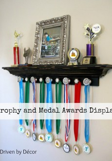 Trophy and Medal Awards Display