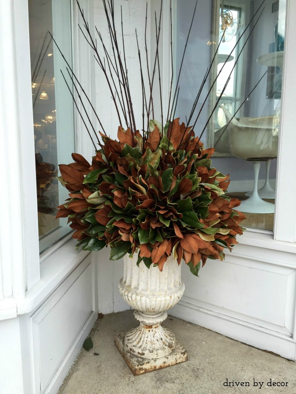 Magnolia leaves in urns as holiday decorations
