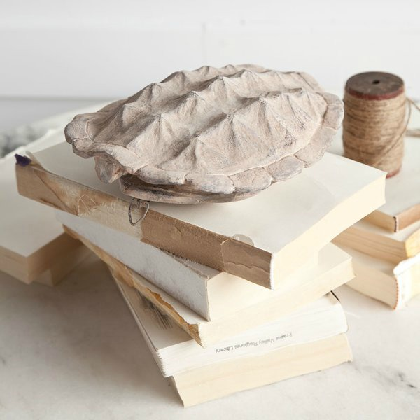 Light colored faux turtle shell to hang on wall or use as tabletop art!