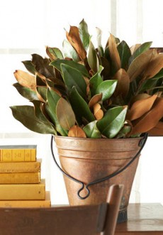 magnolia-leaves-in-copper-pail
