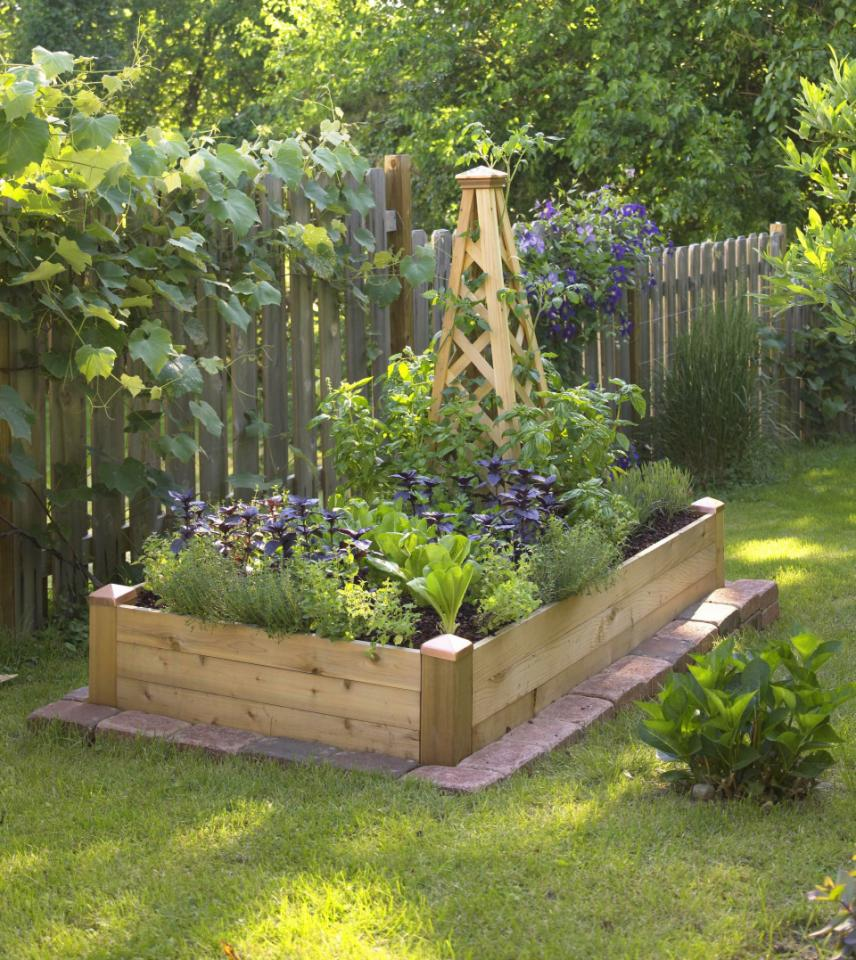 Creating our first vegetable garden advice please driven by decor - Decorative vegetable garden ideas stylish green ...