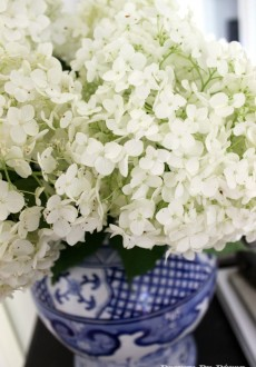 Simple Summer Styling with Hydrangeas