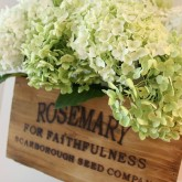 Nesting herb crate filled with summer hydrangeas