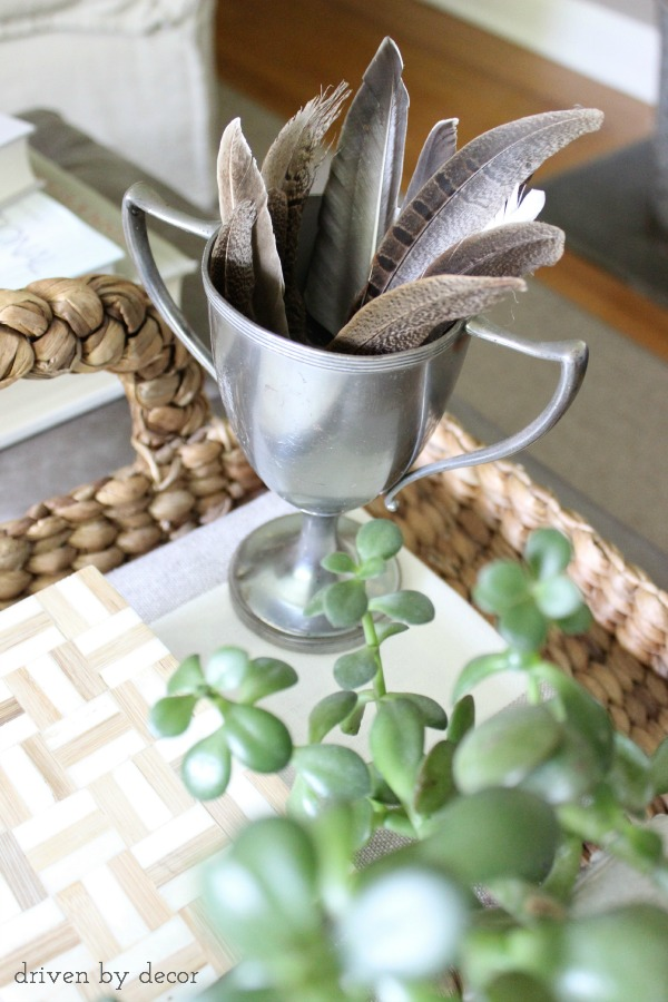 Fall decorating feathers in trophy cup