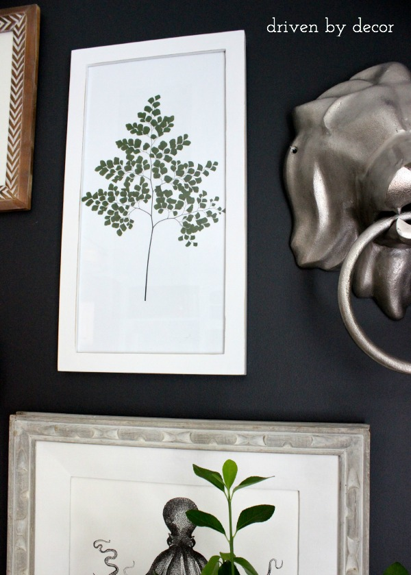 Driven by Decor - Framed plant frond
