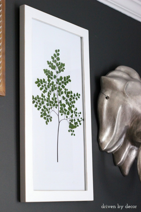 Make your own art by simply framing pressed greenery!