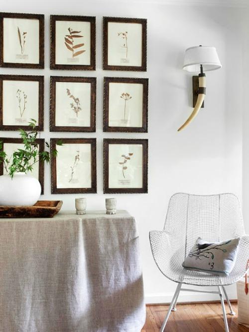 Wall of botanical prints