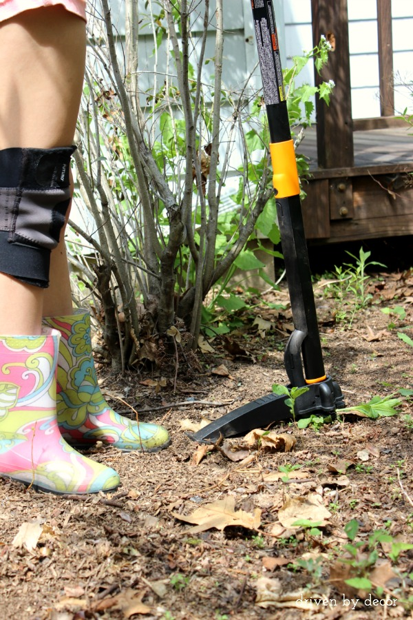 An awesome weeder that allows you to do weeding standing up!