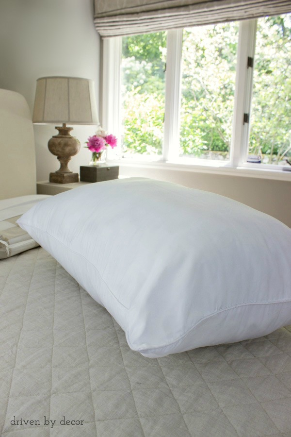 Choose pillows that are hot water washable like these from AllerEase