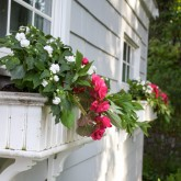 Pink and white flower filled window boxes