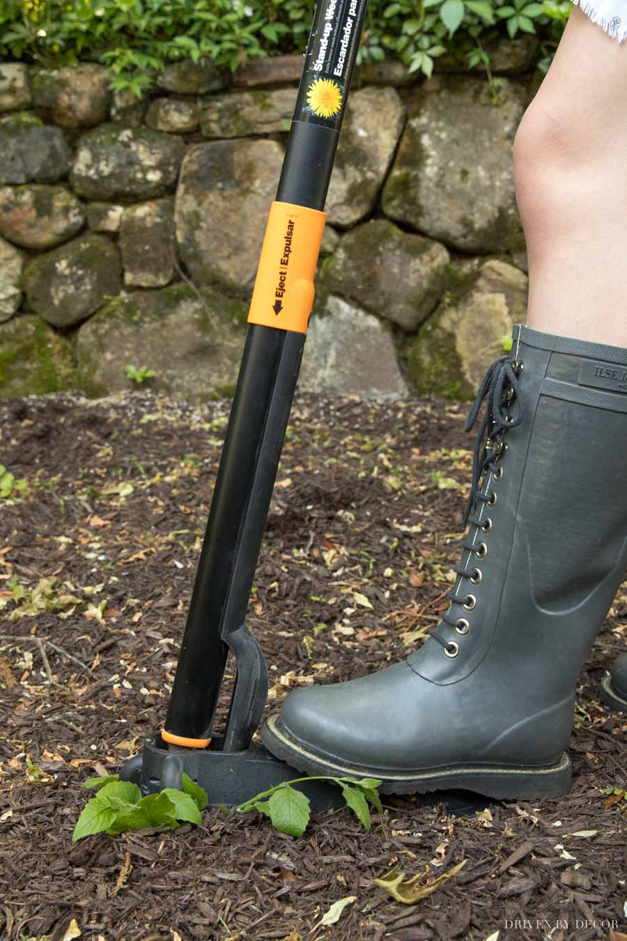 This stand-up weeder is the BEST! Works so well and saves your back!