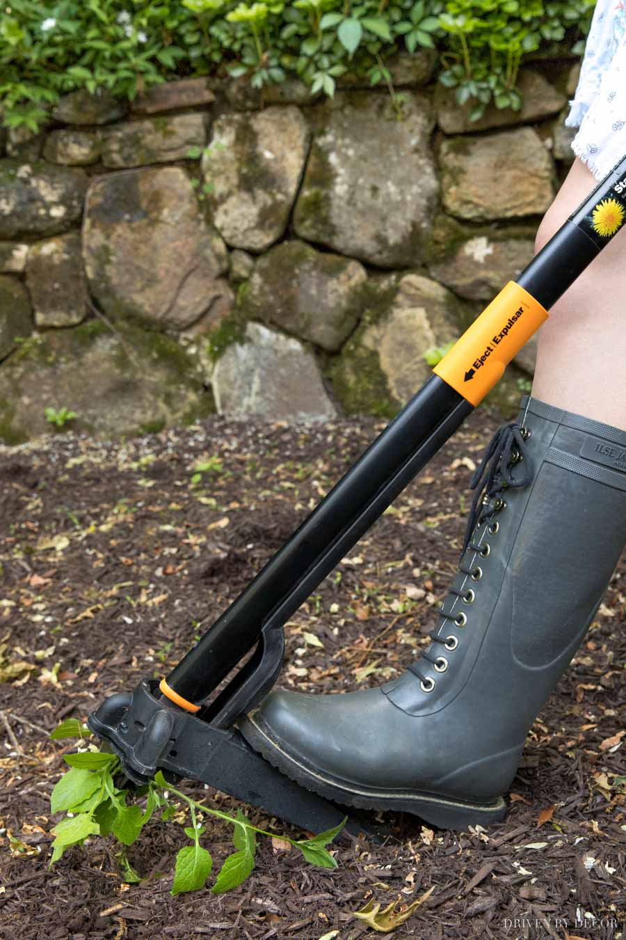 This is the best weeding tool out there! Works so well and saves your back!