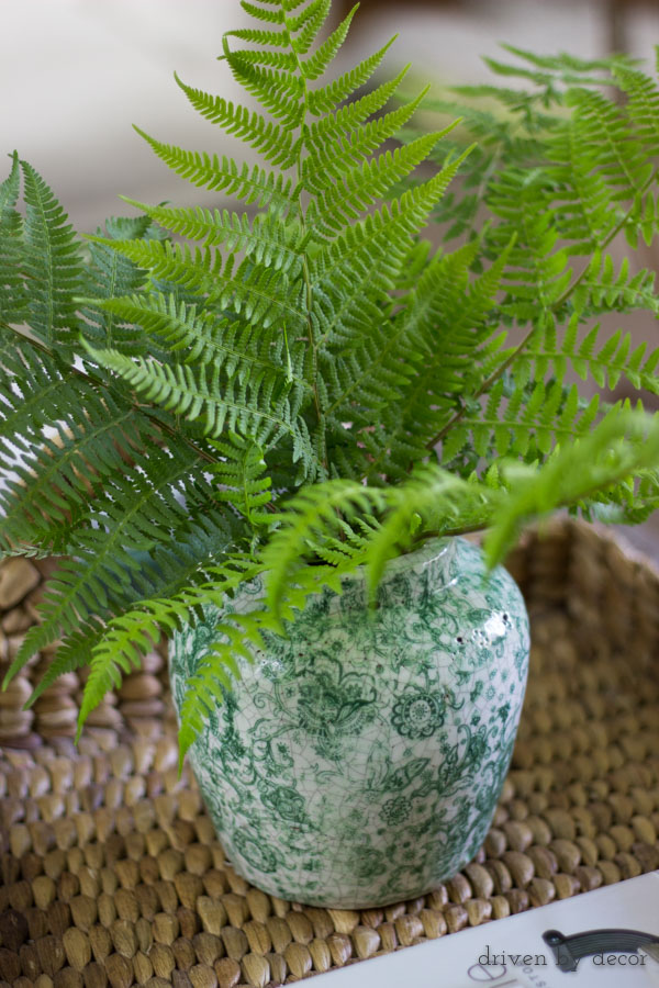 Fern fronds clipped from outside make a beautiful (and free!) vase filler_