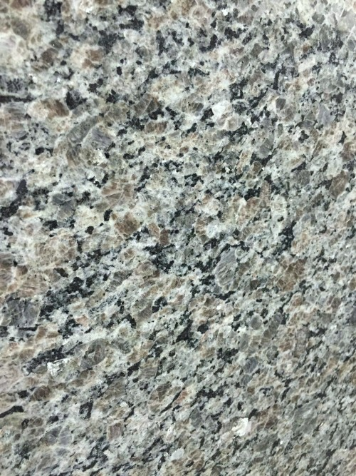 New Caledonia Oyster Pearl Granite