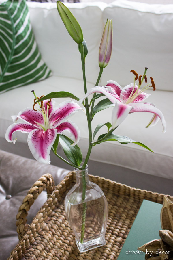 Driven by Decor : pretty flower vases - startupinsights.org