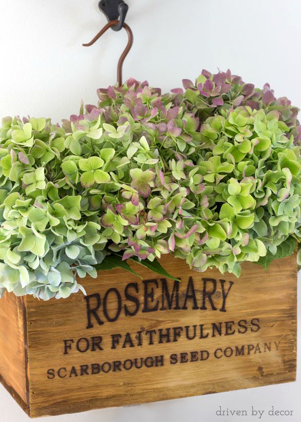 Wooden herb crate filled with fall hydrangeas