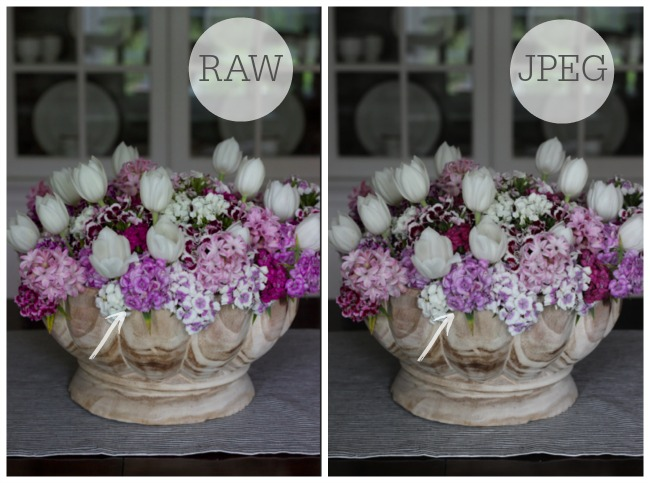 RAW vs. JPEG photos