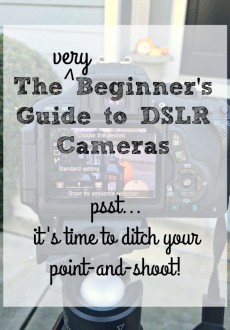 A {very} Beginner's Guide to DSLR Cameras – It's Time to Ditch Your Point-and-Shoot!