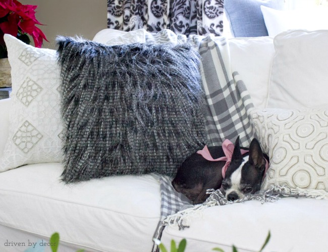 Neutral pillows with different patterns and texture make up this cozy couch
