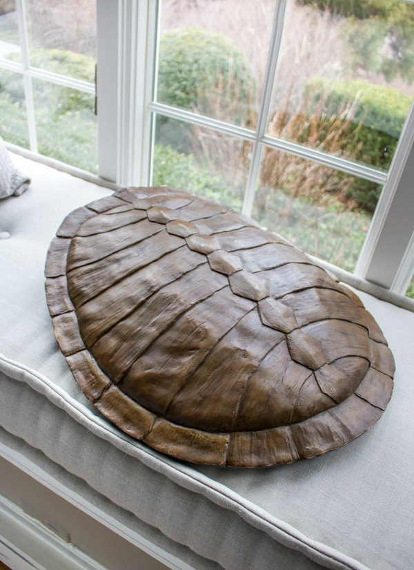 Huge faux turtle shell from HomeGoods!