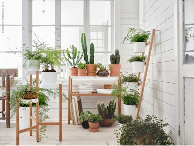 New plant stands from IKEA - love!
