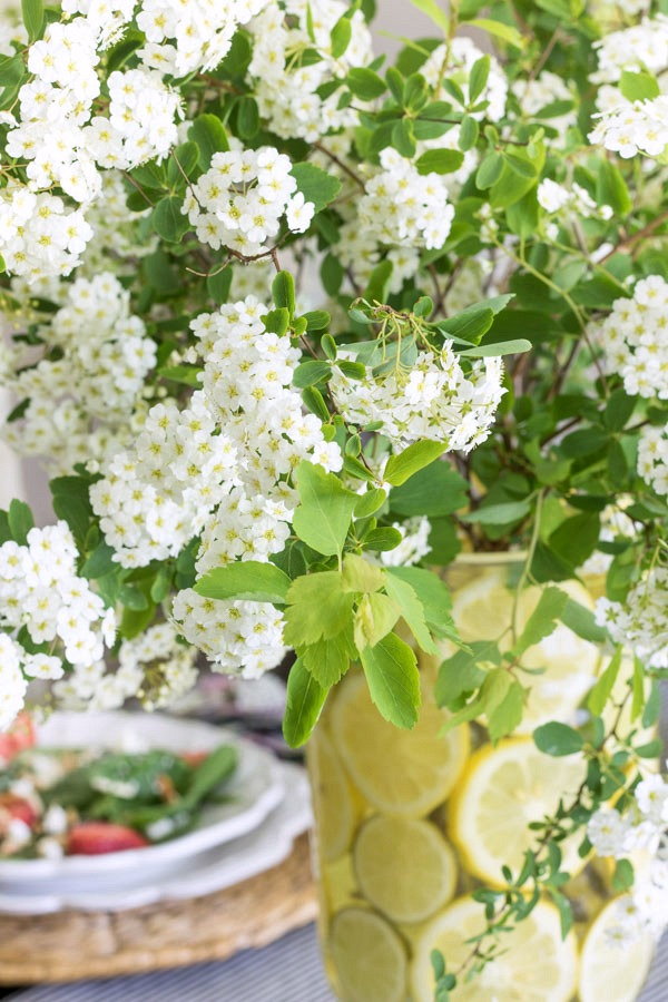 White spirea clipped from backyard bushes make a beautiful, natural centerpiece!