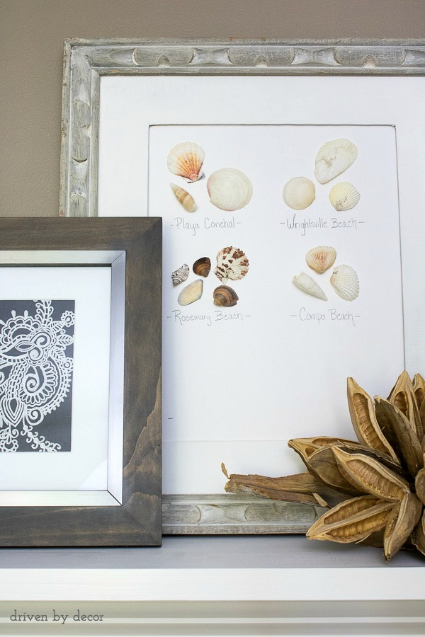 Hot glue shells collected on beach vacations to cardstock paper for your own personalized coastal art!