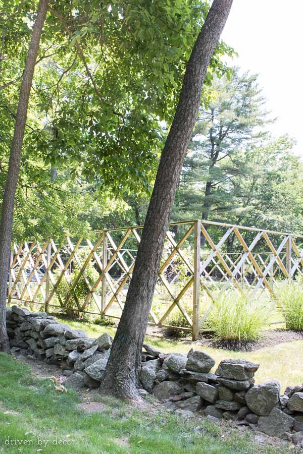 The geometric patterned wood fencing around this garden is a beautiful solution to keeping deer out!