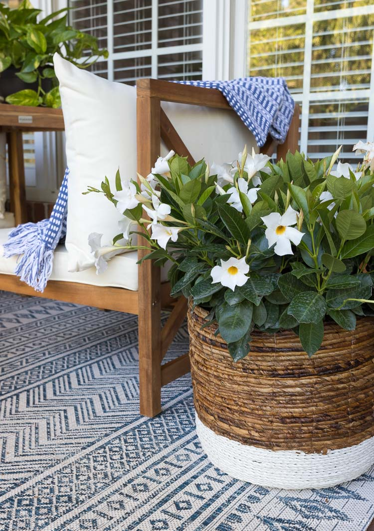 My favorite outdoor decor ideas!