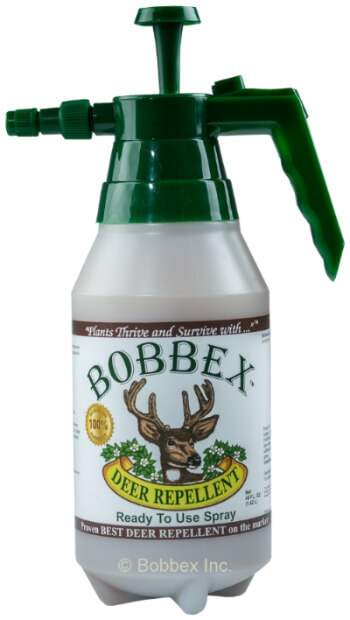 Bobbex Deer Repellent spray - what I use to keep the deer from eating my hydrangeas and other plants!