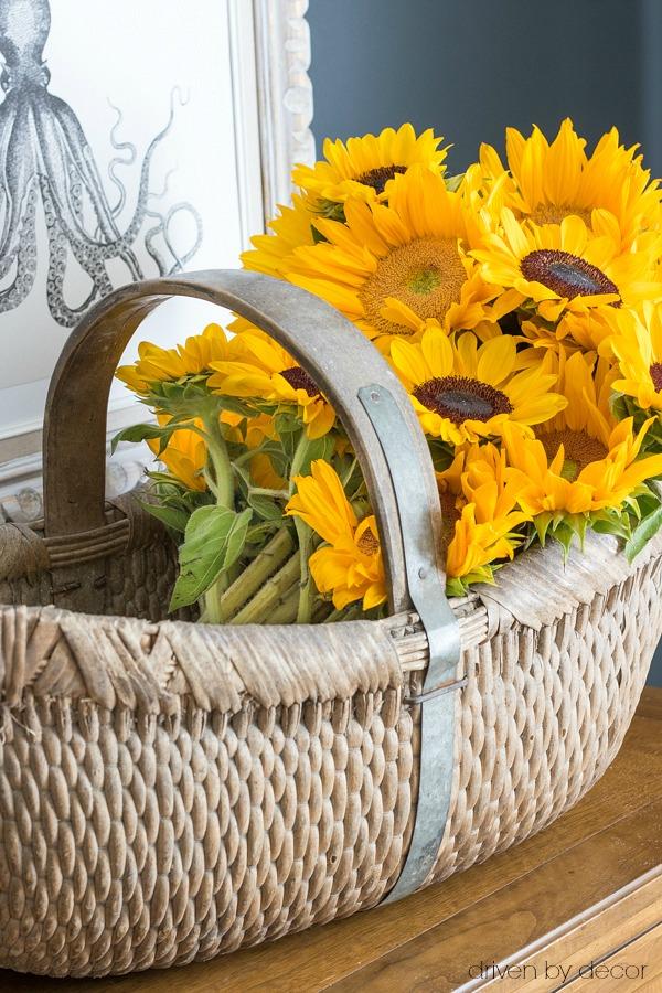 Beautiful basket of fall sunflowers