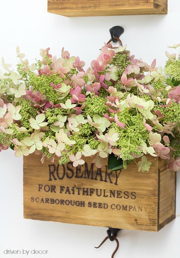 Fall hydrangeas hung on wall in nesting herb crates