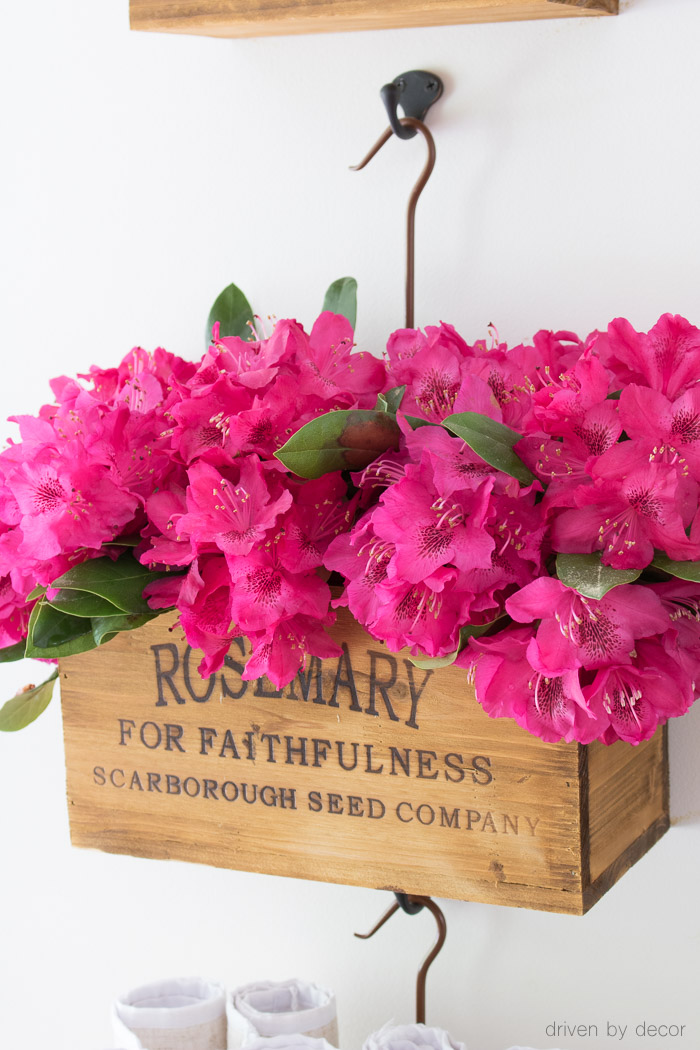 Love this hanging wood crate filled with rhododendrons!