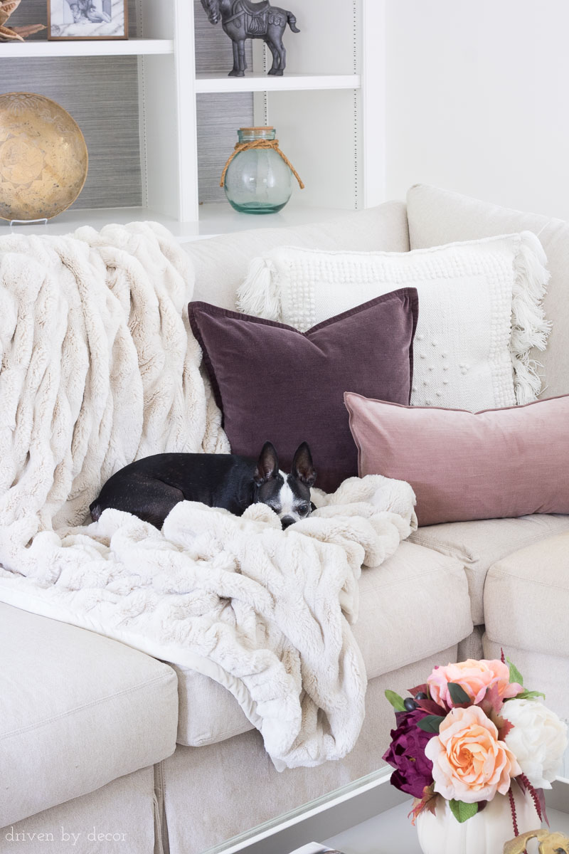 Love these plum velvet pillows mixed with a textured neutral fringed pillow and cozy faux fur throw - perfect for fall!
