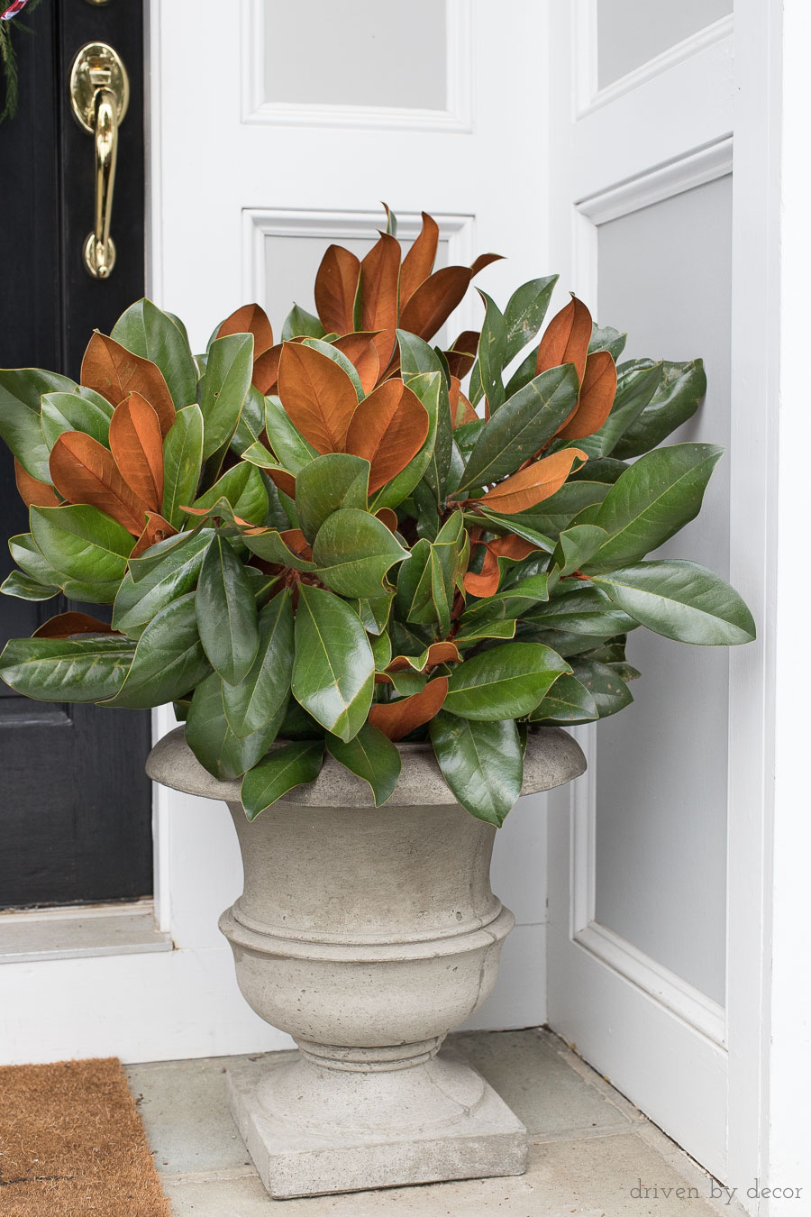 Planters filled with magnolia branches are a simple, beautiful way to decorate your front porch for Christmas!