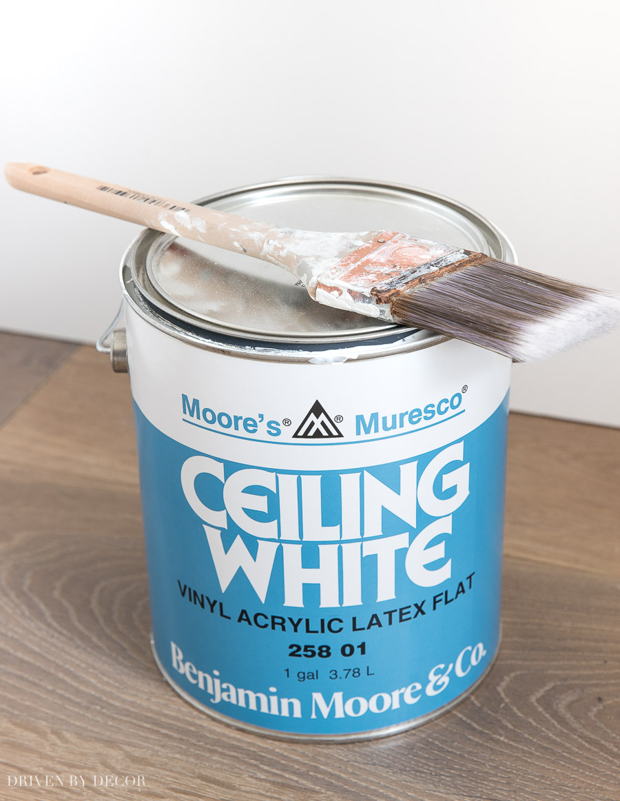 The BEST choice for ceiling paint!