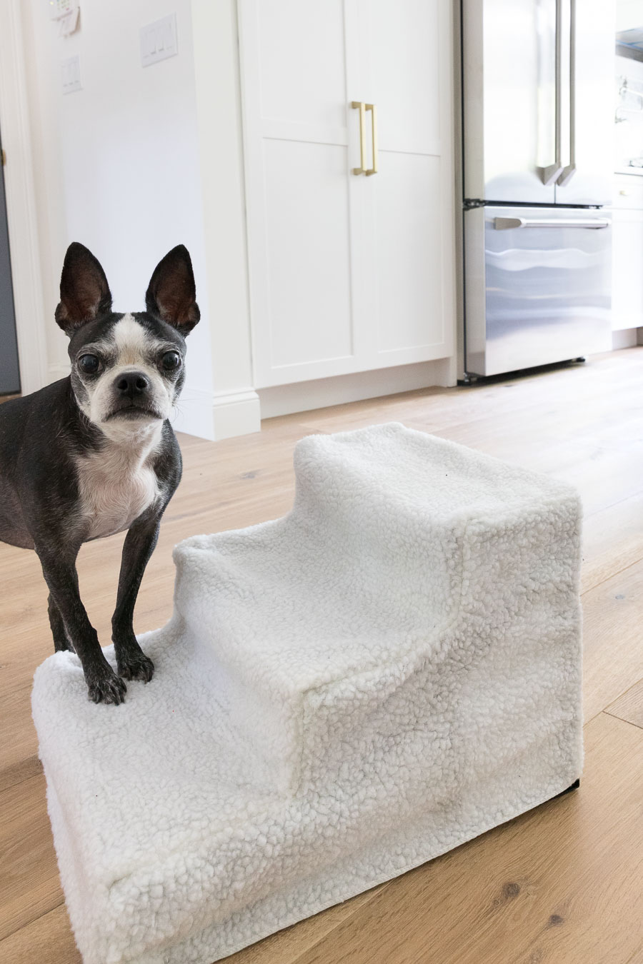 Fleece covered dog steps to help dogs get up on things without jumping!