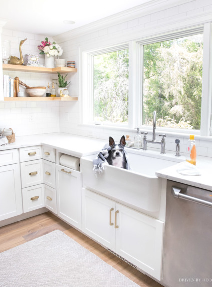 My Five Favorite Tips for Keeping a Cleaner Home with Dogs (and Kids!)