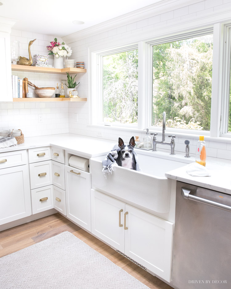 Love the tips in this post on how to keep your house clean with pets!