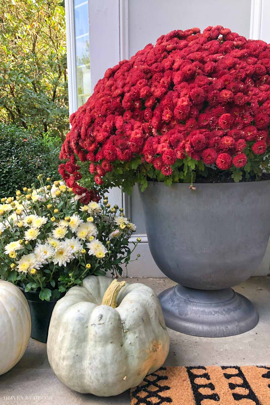 The perfect gray urn planters for your front porch at a GREAT price!!