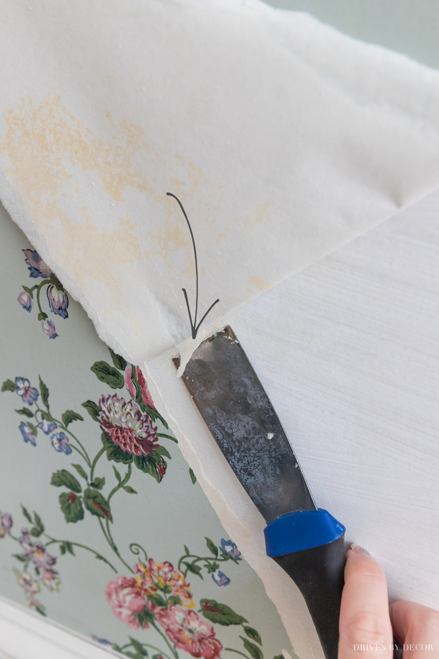 The best, simplest way to remove wallpaper = love this tip!