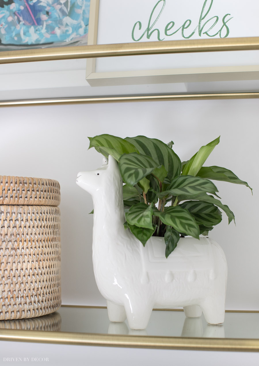 Super cute llama planter!
