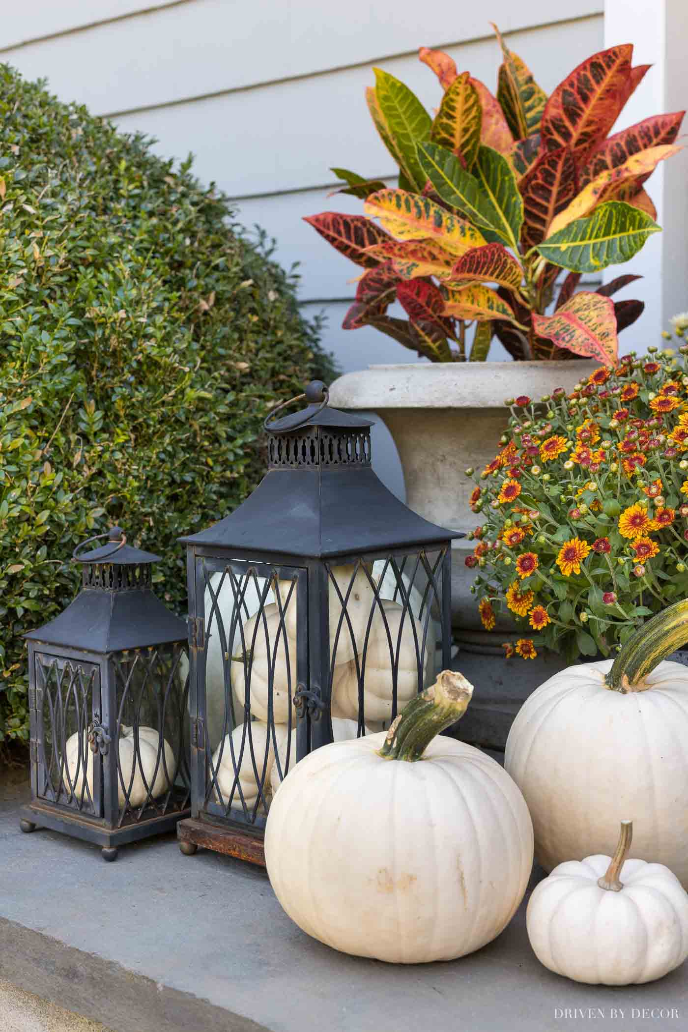 My favorite part of our fall front porch decor is the lanterns filled with pumpkins