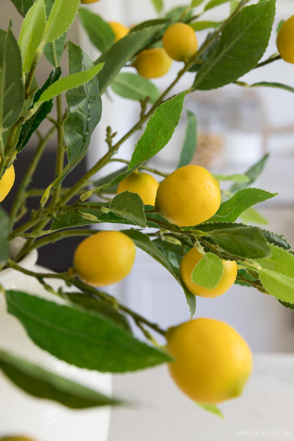 Close up of the artificial lemon branches I have and love!