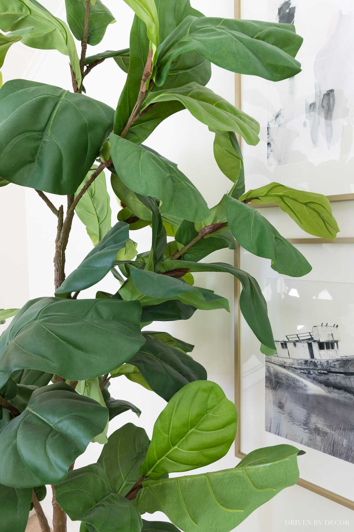 Artificial fiddle leaf fig tree that looks so real!