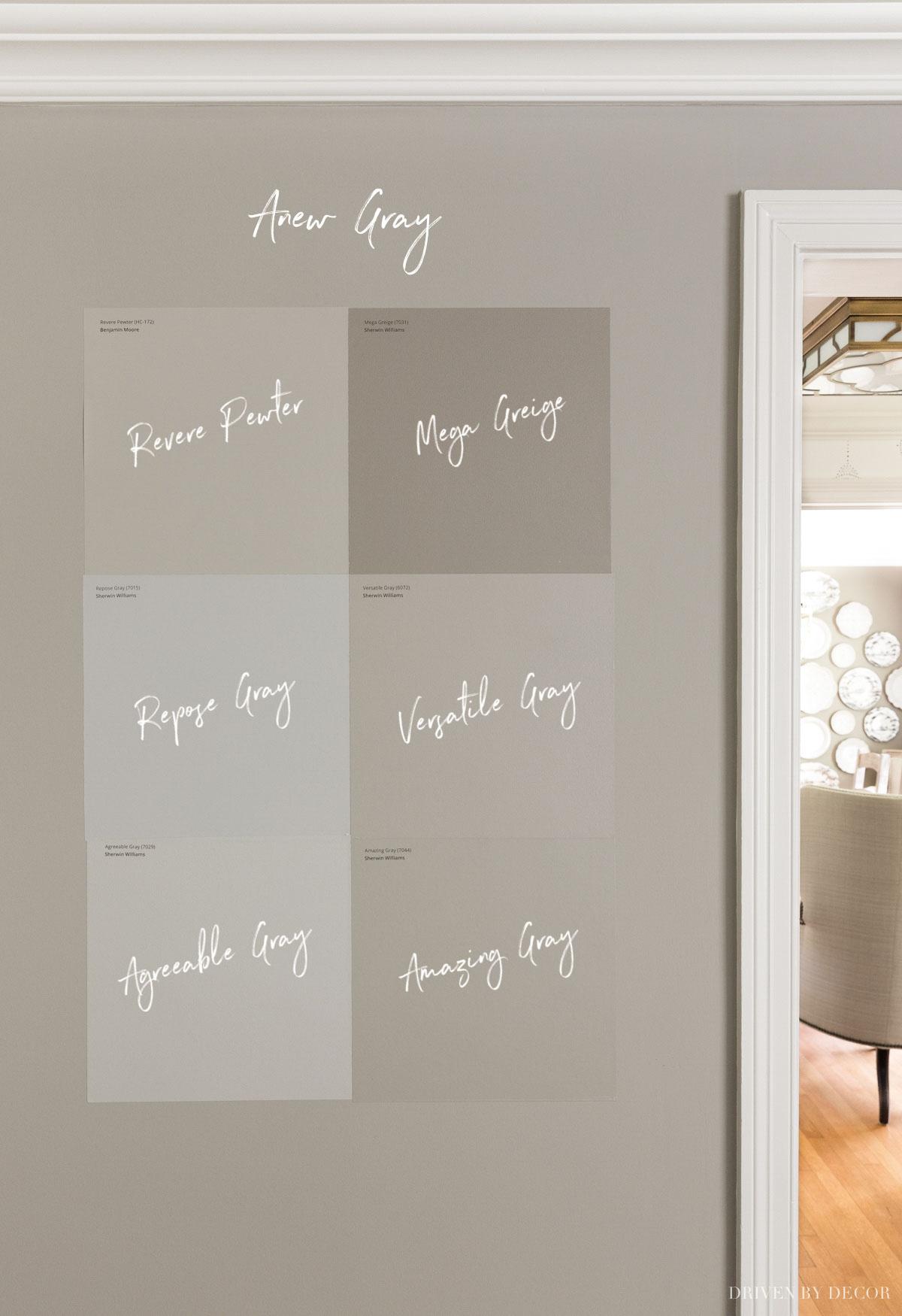 Anew Gray vs. six similar greige paint colors